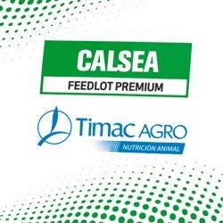 Calsea feedlot