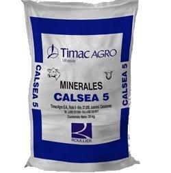 calsea 5