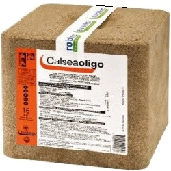 calsea oligo